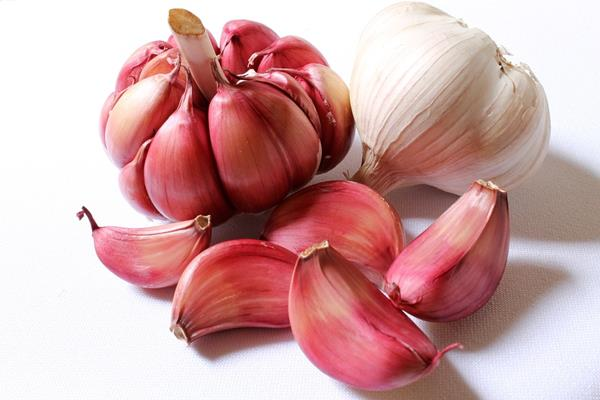 garlic-618400_960_720 (Copy)